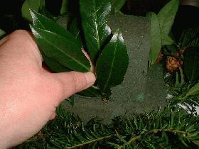 piquer les petites branches de laurier autour du deuxième carré de manière à masquer la mousse