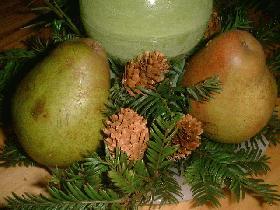 et cacher le reste de la mousse florale avec des petites branches de sapin et parsemer le tout de pommes de pin