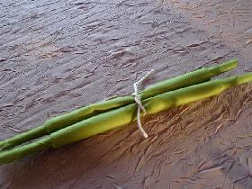 et vous obtenez le pliage en forme d'asperges