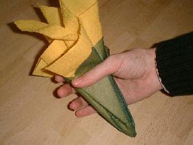 et former une sorte de bouquet