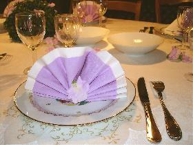 Pliage de serviette bicolore éventail